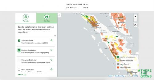 Embedded interactive map
