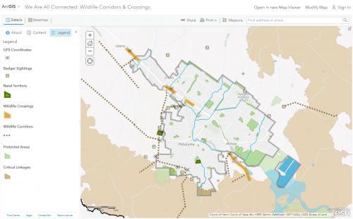 Web map view