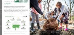 Screenshot of story map, main image people planting a tree