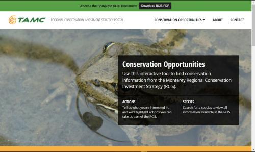 Landing page with red-legged frog