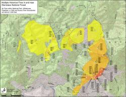 Overlapping Fires in Stanislaus National Forest