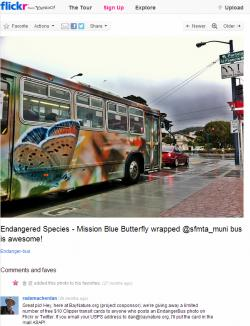 An Endanger Bus