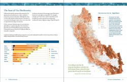Sample Inside Page Spread from Freshwater Report