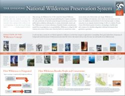Wilderness Poster Infographic