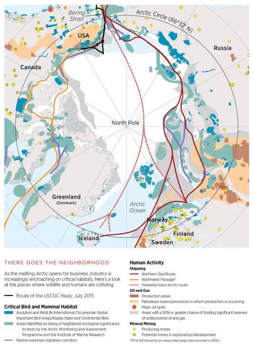 The Arctic: Habitat and Impact
