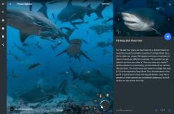 StreetView for sharks!