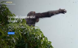 Jane Goodall history story